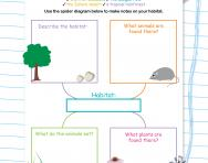 Writing research notes using a spider diagram worksheet