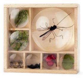 Huckleberry Bug Box