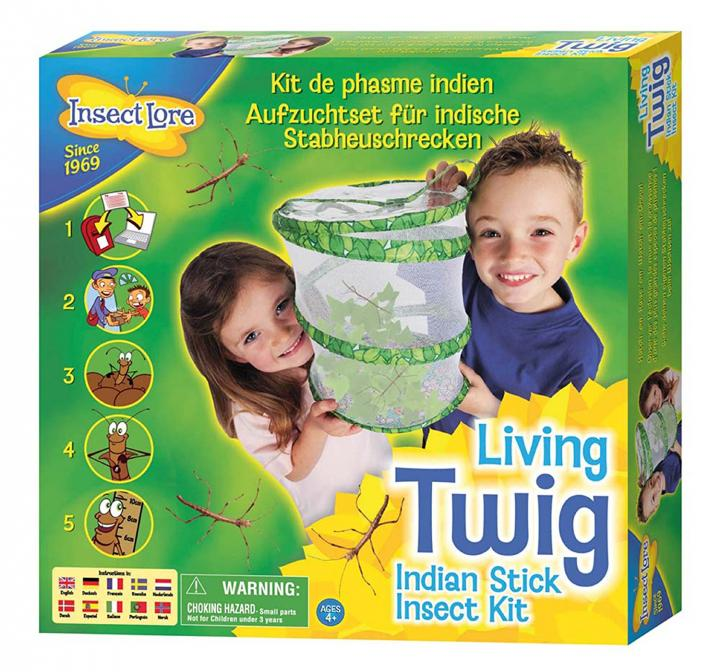 Living Twig