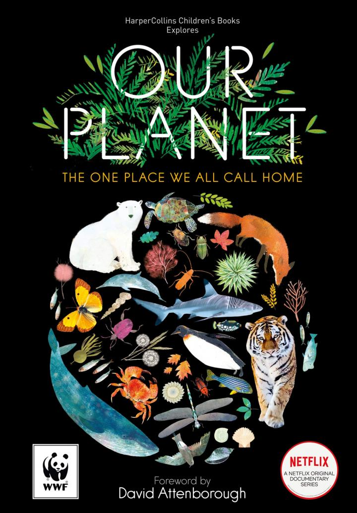Our Planet: The official children's companion to the Netflix documentary series by Matt Whyman