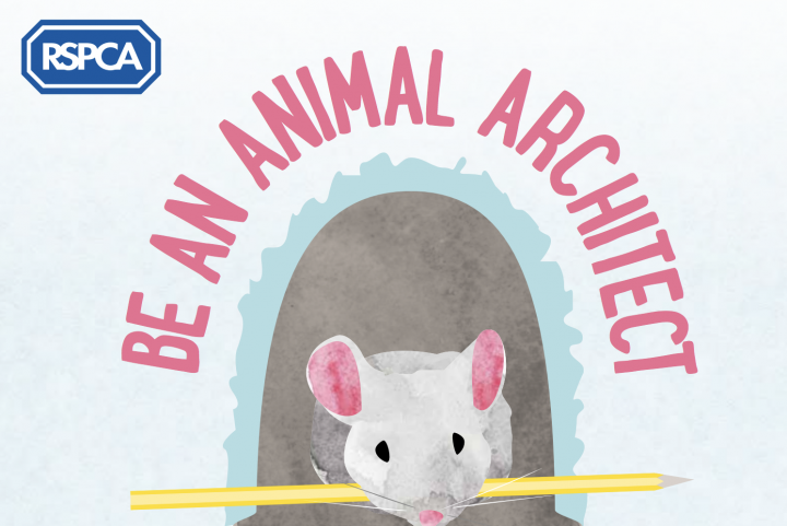 RSPCA's free home learning resources