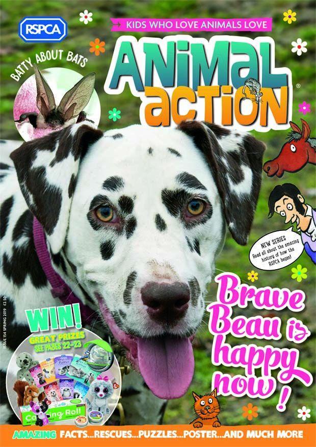 RSPCA Animal Action