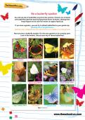 Be a butterfly spotter worksheet