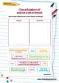 Classification of plants and animals activity