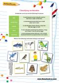 Classifying vertebrates worksheet