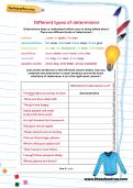 Different types of determiners worksheet