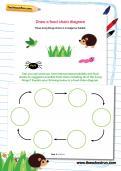 Draw a food chain diagram worksheet