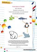 Food chains in habitats worksheet