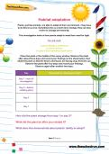 Habitat adaptation worksheet