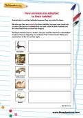 How animals are adapted to their habitat worksheet
