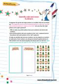 Identify odd and even numbers worksheet