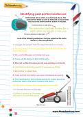 Identifying past perfect sentences worksheet
