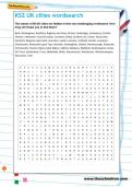 KS2 UK cities wordsearch