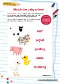 Match the baby animal worksheet