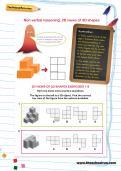 Non-verbal reasoning worksheet: 2D views of 3D shapes