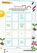 Plant life cycles worksheet