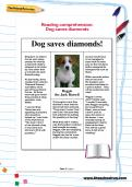 Reading comprehension: Dog saves diamonds
