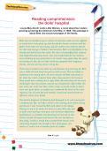Reading comprehension: the dolls' hospital