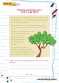Reading comprehension: THE PLANE TREE