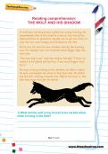 Reading comprehension: THE WOLF AND HIS SHADOW