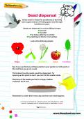 Seed dispersal activity