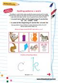 Spelling patterns: c and k worksheet