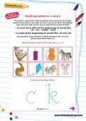 Spelling patterns: c and k worksheet