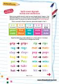 Split vowel digraph words and sentences worksheet