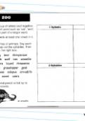 Syllables in animal names worksheet