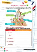 The effects of a healthy diet worksheet