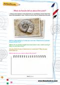 What do fossils tell us about the past worksheet