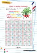 Y5 and Y6 spelling wordsearch