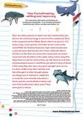 Year 6 proofreading: editing and improving
