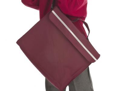 School boy with book bag