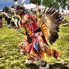 Native american homework help