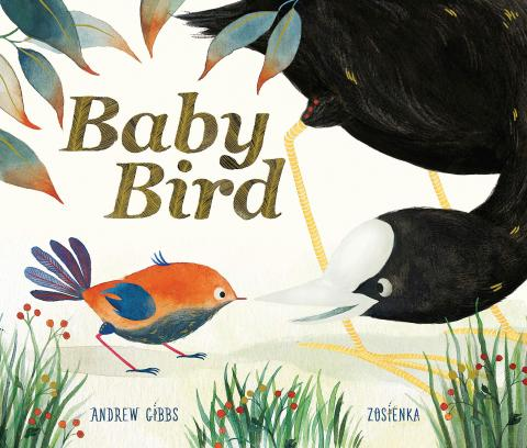 Baby Bird by Andrew Gibbs and Zosienka