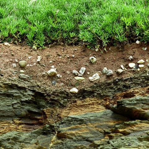 Homework Gnome rocks and soil