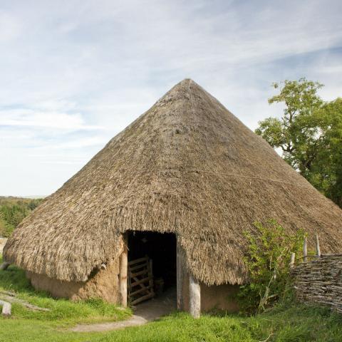Iron Age Homework Gnome