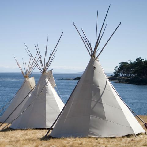 Native Americans Homework Gnome