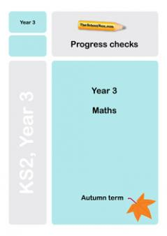 Year 3 Maths Progress checks