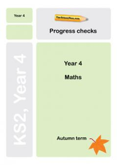 Year 4 maths Progress Check