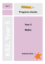 Year 5 maths progress check
