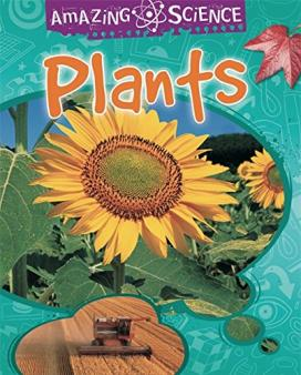 learning about plants in primary school ks1 plants and seeds ks photosynthesis theschoolrun. Black Bedroom Furniture Sets. Home Design Ideas