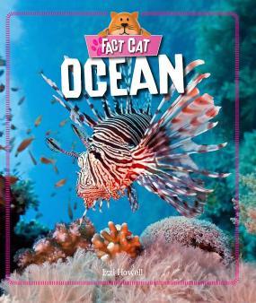 Marine habitats explained for children   Seas and oceans