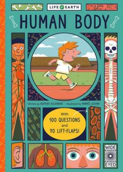 Parts of the body explained for children | Body and organs