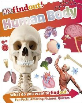 Learning about the body at primary school | KS1 senses | KS2