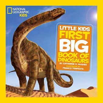 Fossil homework ks2
