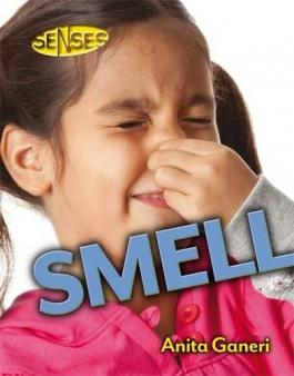 Senses explained for children | Hearing, touch, sight, smell and