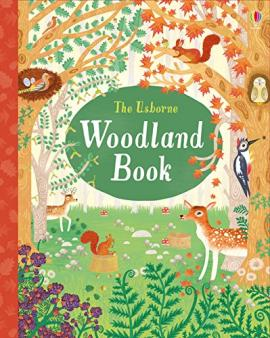 Woodland for children | Forest habitats for KS1 and KS2