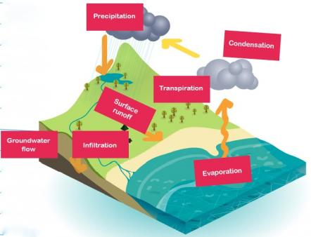 The Water Cycle Explained For Children What Is The Water